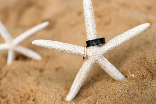 Wedding bands on a starfish on the beach