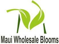 Maui Wholesale Blooms Logo